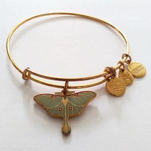 Alex and Ani Luna Moth bracelet